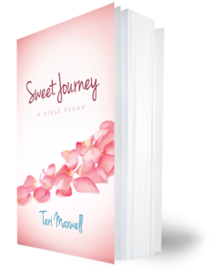 sweet_journey